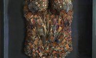 Paulina Skavova, Pheasant, feathers, 2015